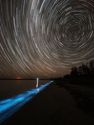 Biolumiscence_Star_Trail_sm